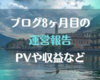 ブログ運営8ヶ月目の報告。PVや収益など