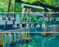 鹿島神宮に行ってみた時の話-勝負運の神様 御手洗や奥参道が神秘的